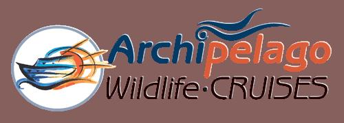 Archipelago Cruises