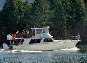 Wildlife Cruises Ucluelet