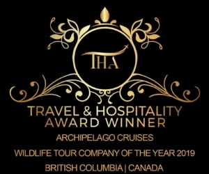 Logo for Travel & Hospitality Awards showing Archipelago Cruises as winner of Wildlife Tour Company of the Year 2019 in BC