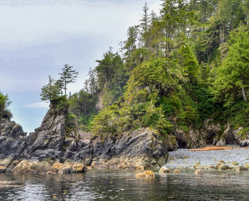 Rugged rocky shoreline with rocky cove and steep, jagged rocks, thickly covered in trees