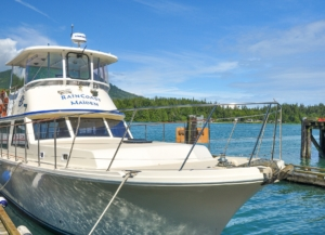 Front and side view of luxury motor yacht tied up at marina
