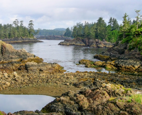 View from Wild Pacific Trail in Ucluelet showing ocean, rocks and rugged islands with trees growing on them