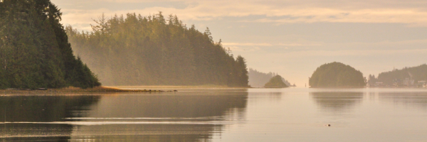Boat tours Vancouver Island
